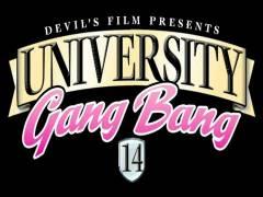 University Gang Hammer 14